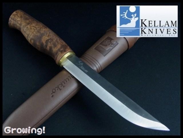 KLKPR5-1.jpg